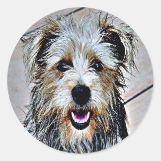 Sticker Rond Gorge d'art de bruit d'Imaal Terrier
