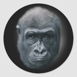 Sticker Rond Gorille mes rêves