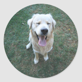 Sticker Rond Happy doggy