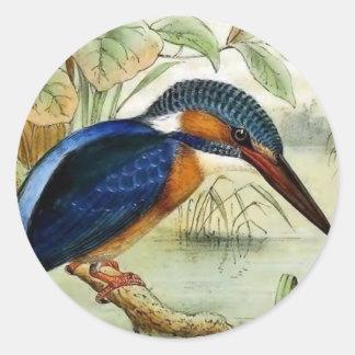 Sticker Rond Illustration vintage d'oiseau de martin-pêcheur