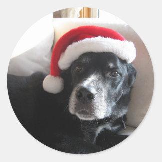 Sticker Rond Mélange de rottweiler de Père Noël Chien-Labrador