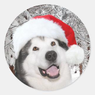 Sticker Rond Noël de Malamute d'Alaska
