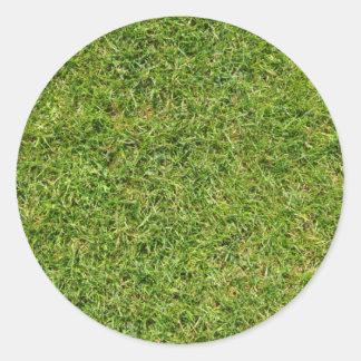 Sticker Rond Pelouse drôle d'herbe verte