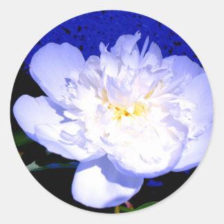 Sticker Rond Pivoine blanche et pourpre
