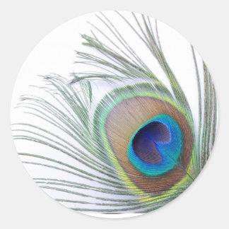 Sticker Rond Plume de paon