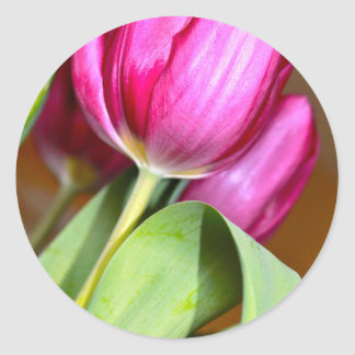 Sticker Rond Pointe du pied par les tulipes