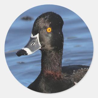 Sticker Rond Profil d'un canard Anneau-Étranglé