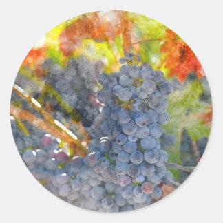Sticker Rond Raisins de vin rouge sur la vigne
