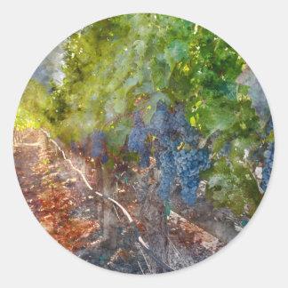 Sticker Rond Raisins sur la vigne pendant la saison d'automne