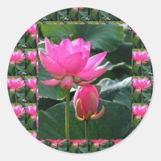 Sticker Rond Rose et BOURGEON de LOTUS
