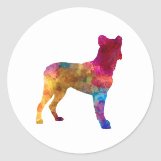 Sticker Rond Saint Miguel Cattle Dog in watercolor