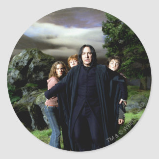 Sticker Rond Snape Hermoine Ron Harry