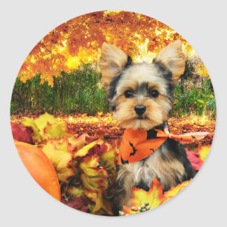 Sticker Rond Thanksgiving de chute - maximum - Yorkie