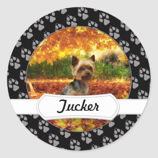 Sticker Rond Thanksgiving de chute - Tucker - Yorkie
