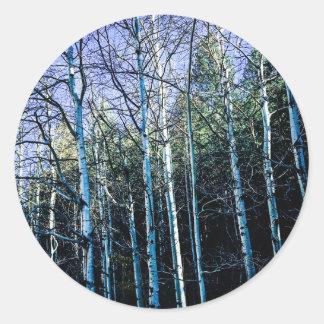 Sticker Rond Trembles et pins en automne