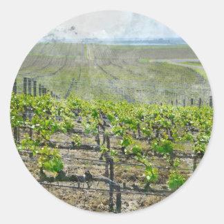 Sticker Rond Vignoble dans Napa Valley la Californie
