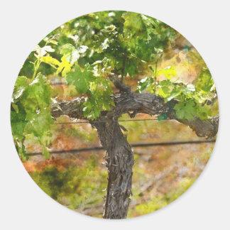 Sticker Rond Vignoble de Napa Valley