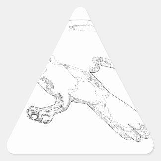 Sticker Triangulaire Art Swooping de griffonnage d'autour du nord