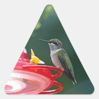 Sticker Triangulaire Colibri été perché