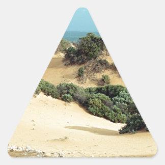 Sticker Triangulaire Dunes de sable balayées par le vent, Australie