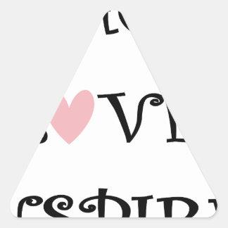 Sticker Triangulaire enseignez l'amour inspirent