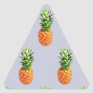 Sticker Triangulaire Express d'ananas