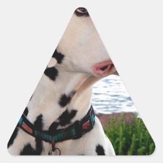 Sticker Triangulaire Kevin le Dalmate