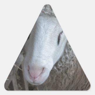 Sticker Triangulaire Moutons avec le foin