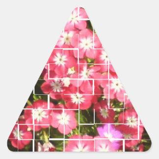 Sticker Triangulaire Rire de SOURIRE et bonheur écarté