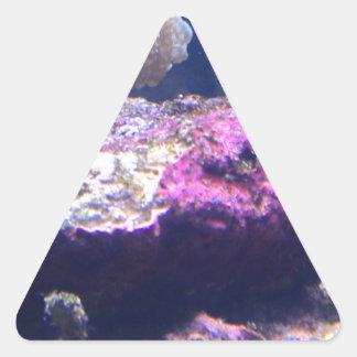 Sticker Triangulaire Roches vivantes colorées