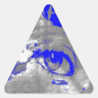 Sticker Triangulaire un oeil pour dolphins.jpg