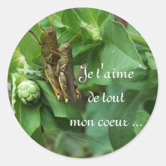 Stickers/het Frans Ronde Sticker