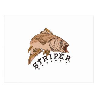 Striper Cartes Postales