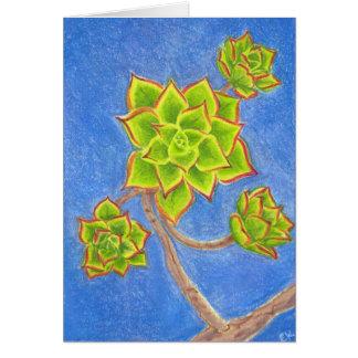 Succulent 1 carte