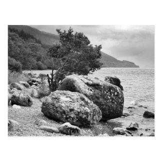 Sur les rivages de Loch Ness B&W Carte Postale