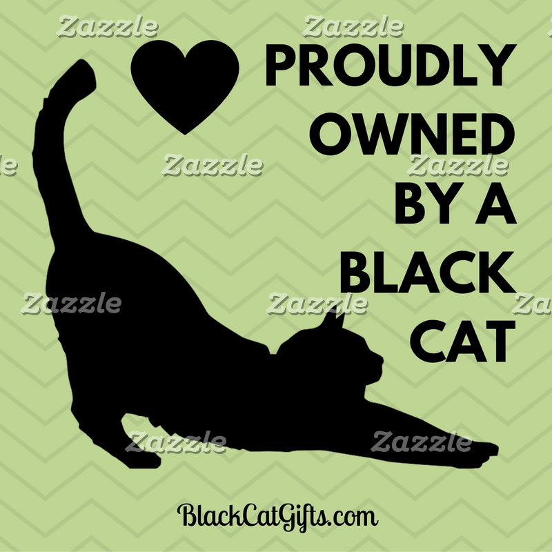 Owned by a Black Cat