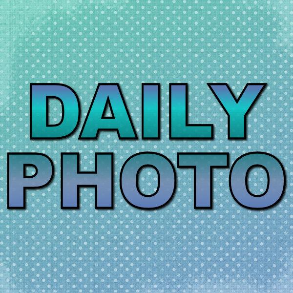 Daily Photo Series