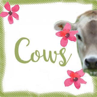 I Love Cows