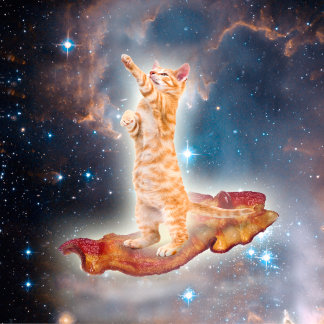 Bacon Surfing Cat in the Universe