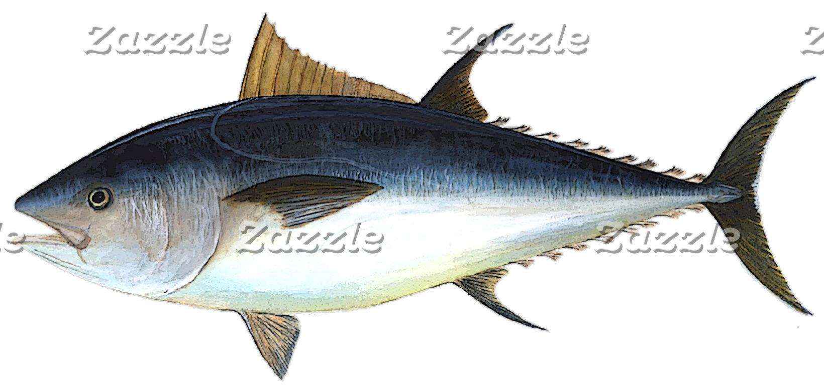 Saltwater Fish