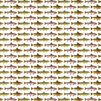 3 TROUT Multiplied