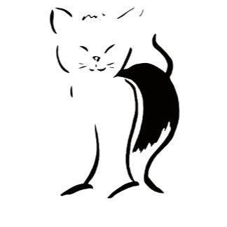 Cat Goodies