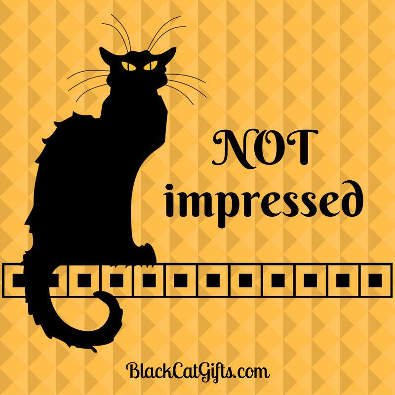 Le Chat Noir Not Impressed