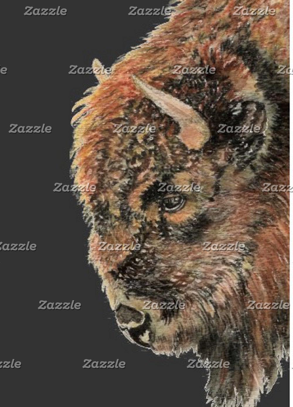 Buffalo-Bison