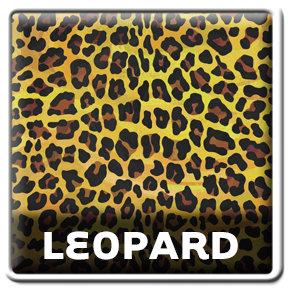 Wild Me Leopard