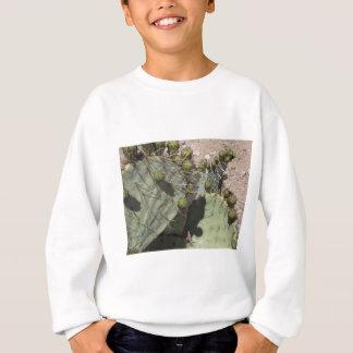 Sweatshirt Bourgeons de figue de Barbarie