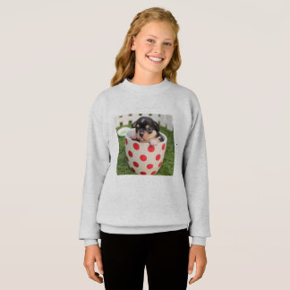 Sweatshirt chandail cool