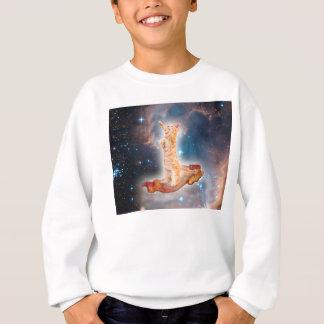 Sweatshirt Chat surfant de lard dans l'univers