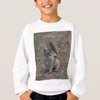 Sweatshirt Écureuil dur