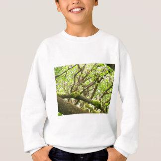Sweatshirt Forêt verte